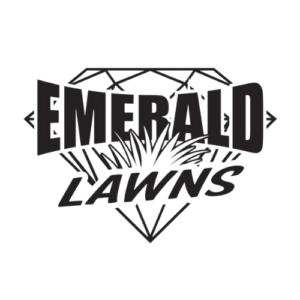 Emerald Lawns Favicon Rettig Digital Web Design